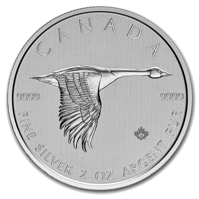 2020 2 oz Canada Goose Silver Coin - Royal Canadian Mint